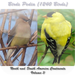 Birds Pedia Vol3 (North & South America)